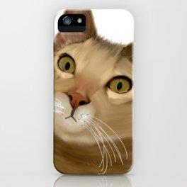 Joey Kitten iPhone Case