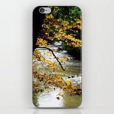 Runs through it. iPhone & iPod Skin
