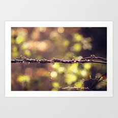 Twisted Vine Art Print