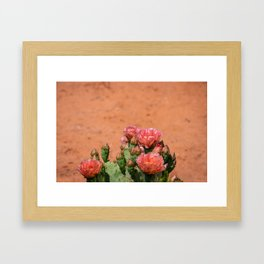 Cacti in Bloom - 5 Framed Art Print
