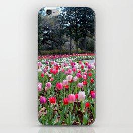 Tulips Tulips Tulips iPhone Skin