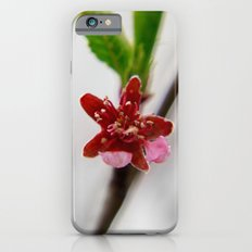 Red peach blossom Slim Case iPhone 6s