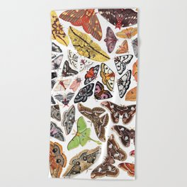 Saturniid Moths of North America Beach Towel
