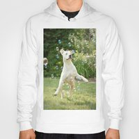 pitbull Hoodies featuring Pitbull and Bubbles  by Laura Ruth