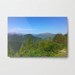 Mountain and trees Metal Print