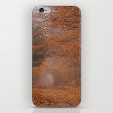 Autumn Path iPhone & iPod Skin