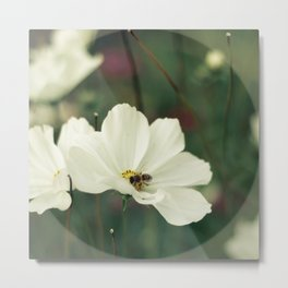 Wild flower and the bee Metal Print
