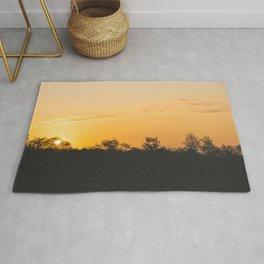 Summer sunrise Rug