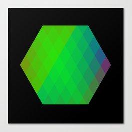 Hexagon? Canvas Print