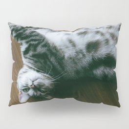 Cat by Joey Huang Pillow Sham