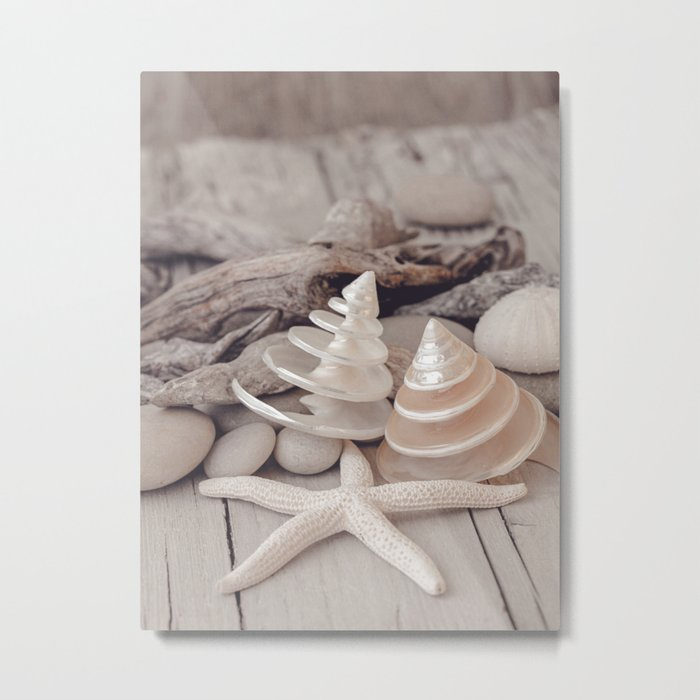 Beach Still Life With Shells And Starfish Metal Print