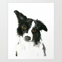border collie Art Prints featuring Border Collie by Naomi Bardoff