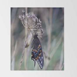 Butterfly emerging from cocoon Throw Blanket