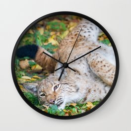 Playful Lynx Wall Clock