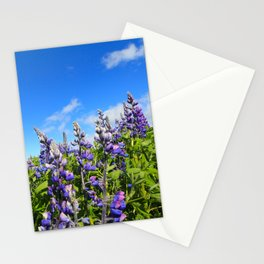Summer Lupine in Iceland Stationery Cards