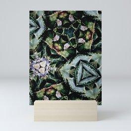 Succulents On Show No 2 Mini Art Print