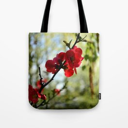 Bold Red Flower Tote Bag