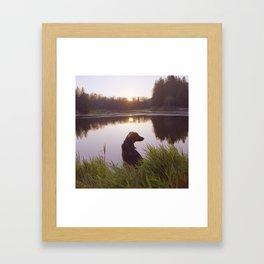 Sunset In the marsh Framed Art Print