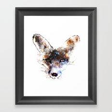 Stars in a Fox Framed Art Print