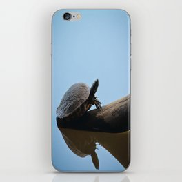 Turtle on The Lake (Color) iPhone Skin