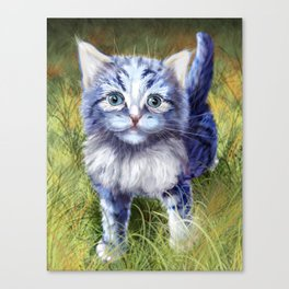 Little Aurora Canvas Print