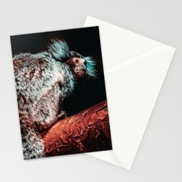 Mischievous Marmoset II Photograph Stationery Cards