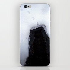 Snow 8 iPhone & iPod Skin