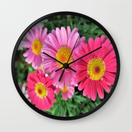 pink daises Wall Clock