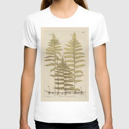 Vintage Fern Botanical T-shirt
