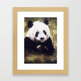Panda Bear Pastel Painting Framed Art Print