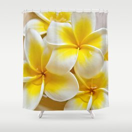 Plumeria Blossoms Shower Curtain