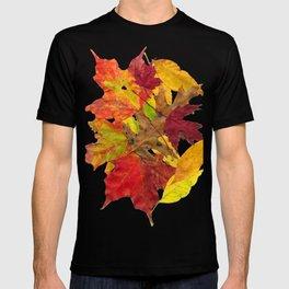 Autumn Fall Leaves Foliage Art T-shirt