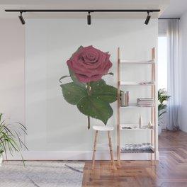 Single Standing Rose (Dark Pink) Wall Mural