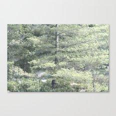Room To Grow Canvas Print
