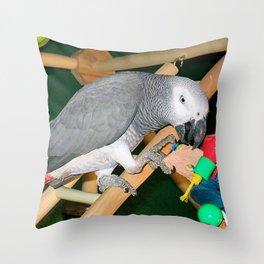 Doobie the parrot Throw Pillow