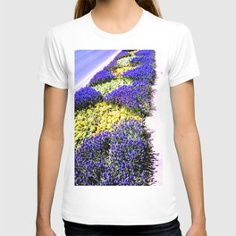 Intense purple. T-shirt
