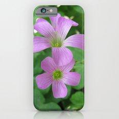 INDIA - Purple Flowers iPhone 6s Slim Case