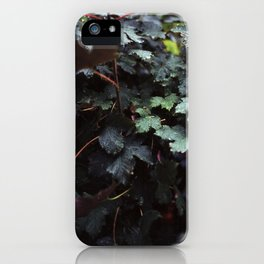 rainy laves iPhone Case
