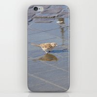 jack sparrow iPhone & iPod Skins featuring sparrow... jack? by death above