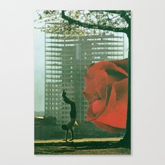 handstands for art Canvas Print