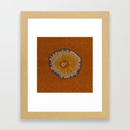 Growing - ginkgo - embroidery based on plant cell under the microscope Framed Art Print
