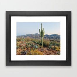 Spring in the Desert Framed Art Print