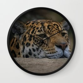 Jaguar Peeking Over The Wall Wall Clock