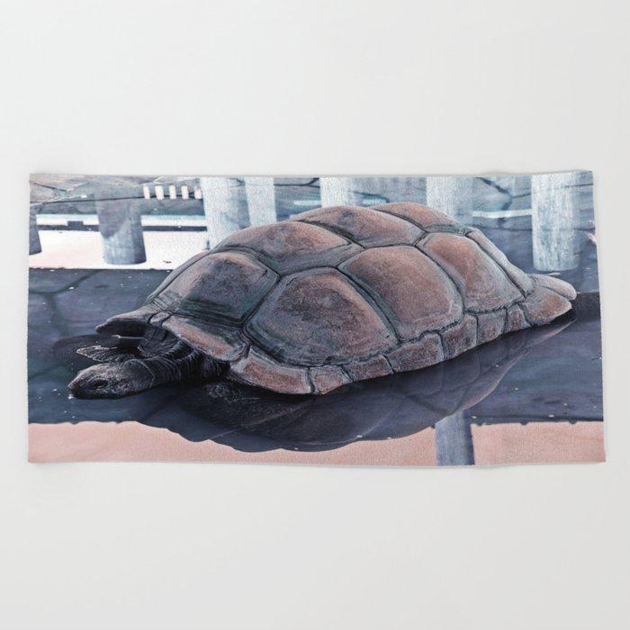 Tortoise Fair in the Pond's Mirror Glare Beach Towel