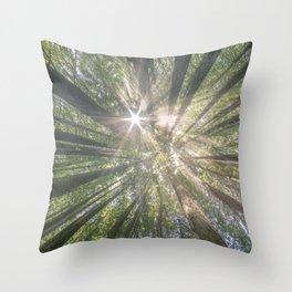 Summer light, Southwark park - United Kingdom Throw Pillow