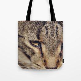 Kitties are so nice. Tote Bag