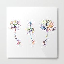 Multipolar Neurons Art Neuroscience Art Brain Cell Anatomy Art Colorful Watercolor Metal Print