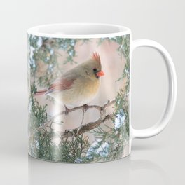 Winter Pair Cardinals (sq) Coffee Mug