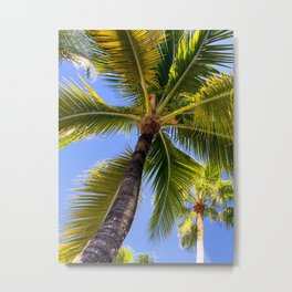 Palm Tree in Paradise Metal Print