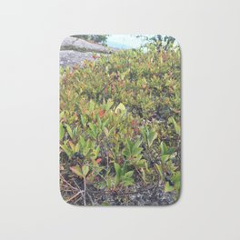 Wild Maine Blueberries on Pleasant Mountain (2) Bath Mat